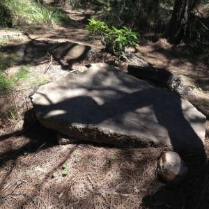 Remnants of an Ancient Civilisation.
