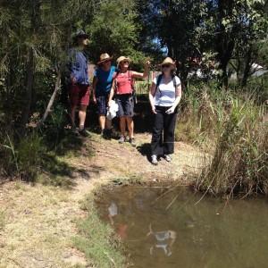 Bold creek explorers